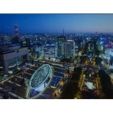 4 DAYS NAGOYA TOUR