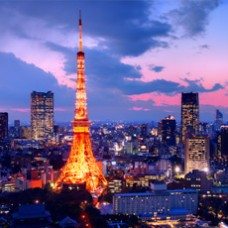 6D4N Yoyo Tokyo